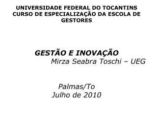UNIVERSIDADE FEDERAL DO TOCANTINS CURSO DE ESPECIALIZAÇÃO DA ESCOLA DE GESTORES GESTÃO E INOVAÇÃO