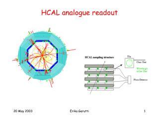 HCAL analogue readout