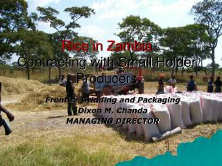 Rice in Zambia Contracting with Small Holder Producers