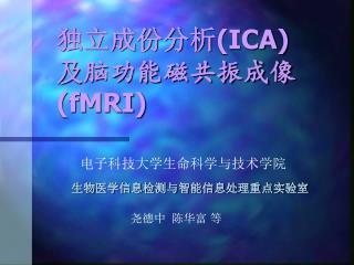 独立成份分析 (ICA)  及 脑功能磁共振成像 (fMRI)