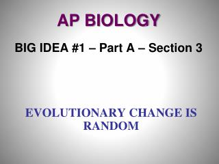 Evolutionary Change is Random