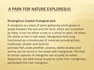 A park for nature explores(II)