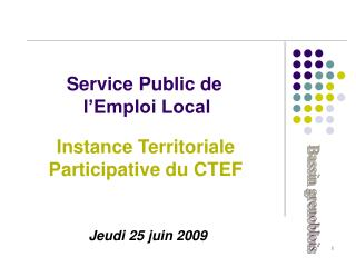 Service Public de  l'Emploi Local