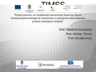 Evaluări internaționale – TIMSS Prof. Căpăţînă Smaranda Prof. Hididiş  Florica Prof. Niculae Anca