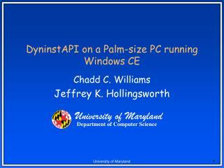DyninstAPI on a Palm-size PC running Windows CE