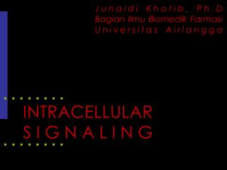 INTRACELLULAR SIGNALING
