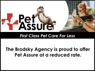 First Class Pet Care For Less