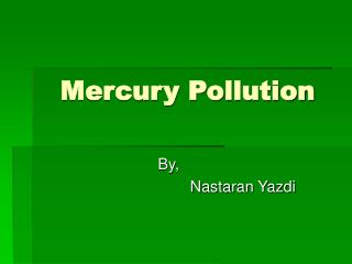 Mercury Pollution