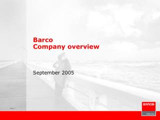 Barco  Company overview