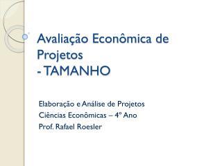 Avaliação Econômica de Projetos - TAMANHO
