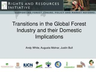 Transitions in the Global Forest Industry and their Domestic Implications