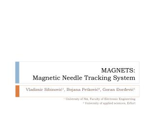 MAGNETS: Magnetic Needle Tracking System