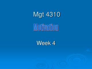 Mgt 4310