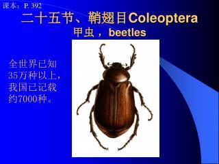 二十五节、鞘翅目 Coleoptera 甲虫 , beetles