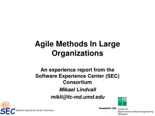 Agile Methods In Large Organizations