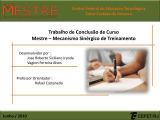 Trabalho de Conclusão de Curso Mestre – Mecanismo Sinérgico de Treinamento