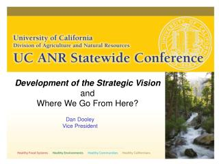 Development of the Strategic Vision and Where We Go From Here?