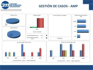 GESTIÓN DE CASOS - AMP