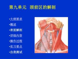 第九单元    颈前区的解剖 大纲要求  概述  表面解剖  详细内容 操作过程 实习要点 自我测试