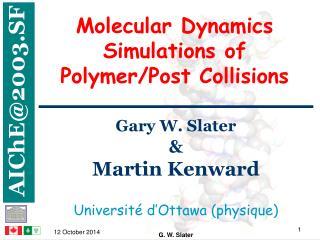 Molecular Dynamics Simulations of  Polymer/Post Collisions