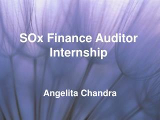 SOx Finance Auditor Internship