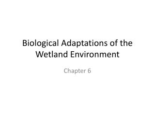 Biological Adaptations of the Wetland Environment