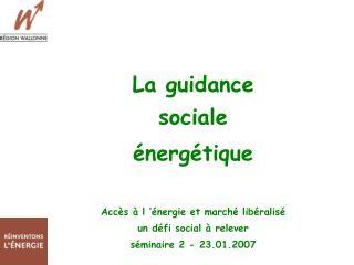 La guidance  sociale  énergétique Accès à l'énergie et marché libéralisé un défi social à relever