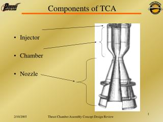 Components of TCA