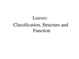 Leaves:  Classification, Structure and Function