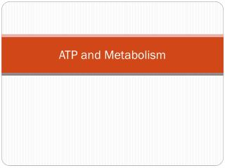 ATP and Metabolism
