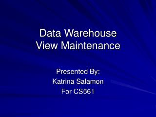 Data Warehouse View Maintenance