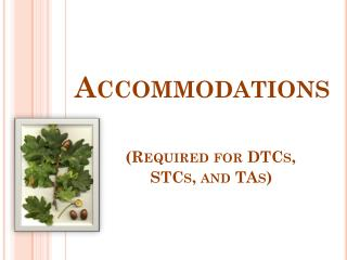 Accommodations (Required for DTCs,     STCs, and TAs)