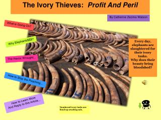 The Ivory Thieves:   Profit And Peril