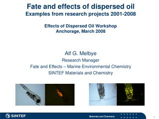 Alf G. Melbye Research Manager Fate and Effects – Marine Environmental Chemistry
