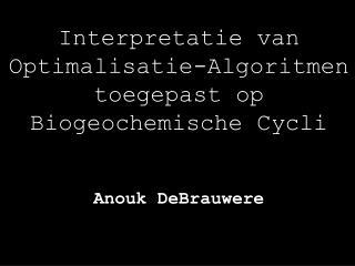 Interpretatie van  Optimalisatie-Algoritmen toegepast op  Biogeochemische Cycli