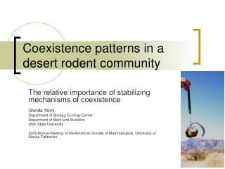 Coexistence patterns in a desert rodent community
