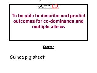 Starter Guinea pig sheet