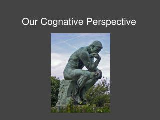 Our Cognative Perspective