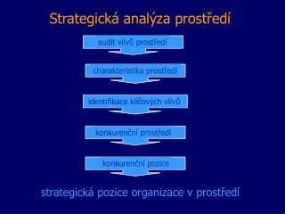Strategická analýza prostředí