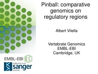 Pinball: comparative genomics on regulatory regions