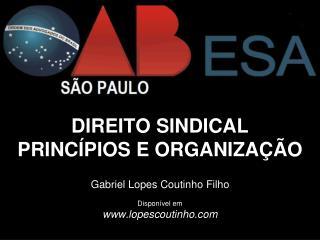 DIREITO SINDICAL PRINCÍPIOS E ORGANIZAÇÃO Gabriel Lopes Coutinho Filho Disponível em