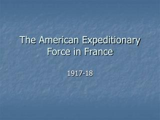 The American Expeditionary Force in France