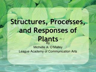 Structures, Processes, and Responses of Plants