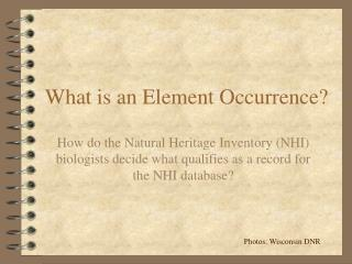 What is an Element Occurrence?