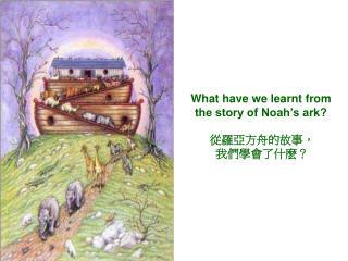 從羅亞方舟的故事, 我們學會了什麽?
