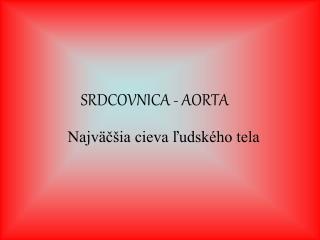 SRDCOVNICA - AORTA