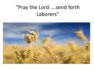 Pray the Lord  .send forth Laborers