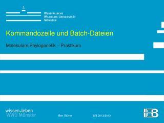 Kommandozeile und Batch-Dateien Molekulare Phylogenetik – Praktikum