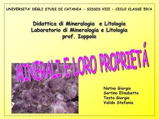UNIVERSITA' DEGLI STUDI DI CATANIA - SISSIS VIII - CICLO CLASSE 59/A