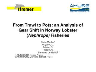 From Trawl to Pots: an Analysis of Gear Shift in Norway Lobster ( Nephrops)  Fisheries